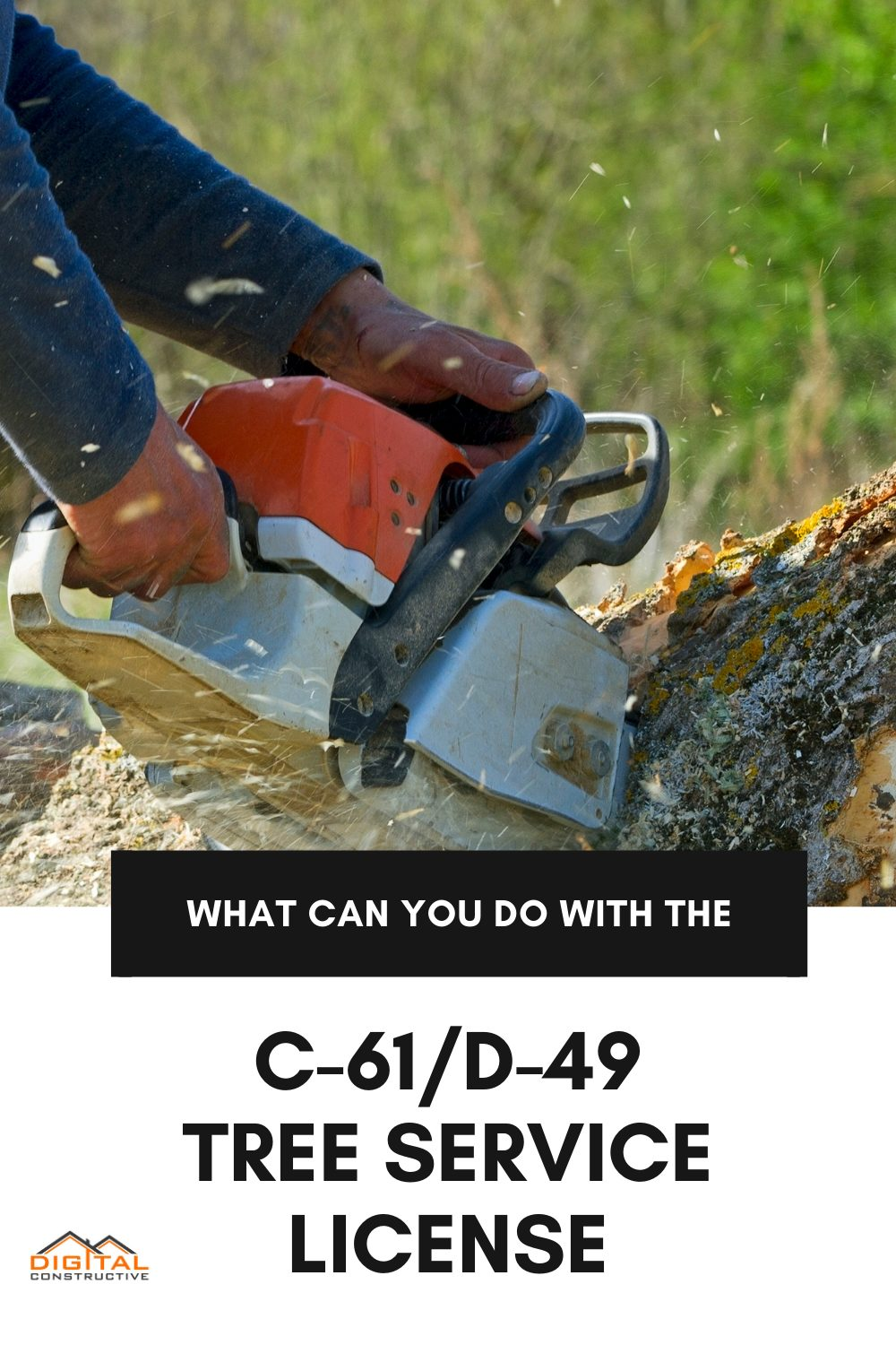 what can you do with a C-61/D-49 tree service contractor license in California
